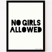 zwart-wit poster no girls allowed